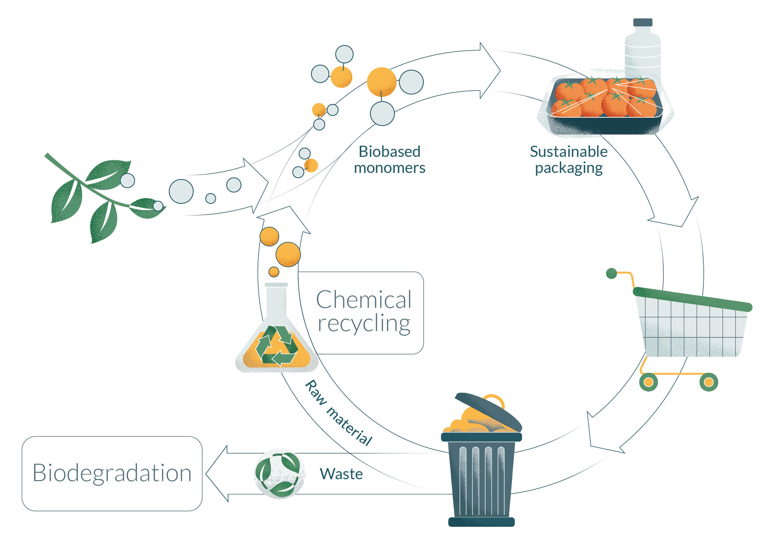 Nature project circular economy of biobased polyesters